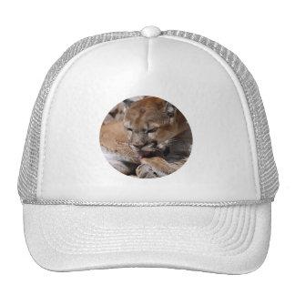 Cougar Grooming Trucker Hats