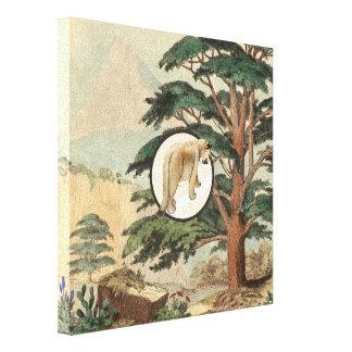 Cougar In Natural Habitat Illustration Canvas Print