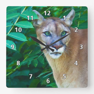 Cougar in the Jungle Clock