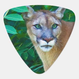 Cougar in the Jungle Guitar Pick