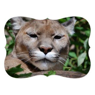 Cougar Card