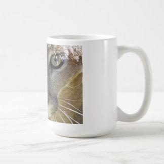 Cougar looking at you coffee mug