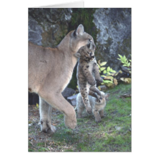 Cougar Mom and Cubs Card Greeting Card
