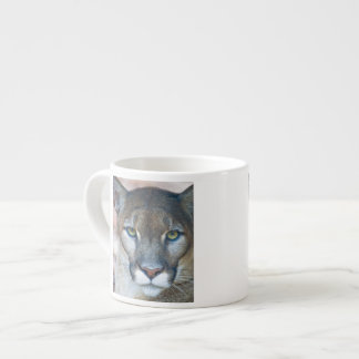 Cougar, mountain lion, Florida panther, Puma