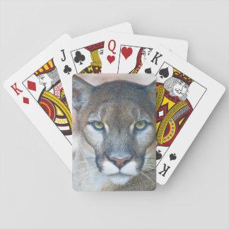Cougar, mountain lion, Florida panther, Puma 2 Playing Cards