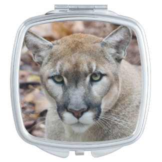Cougar, mountain lion, Florida panther, Puma Compact Mirror