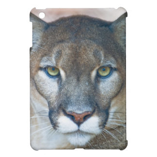 Cougar, mountain lion, Florida panther, Puma Cover For The iPad Mini