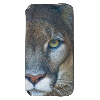 Cougar, mountain lion, Florida panther, Puma Incipio Watson™ iPhone 6 Wallet Case
