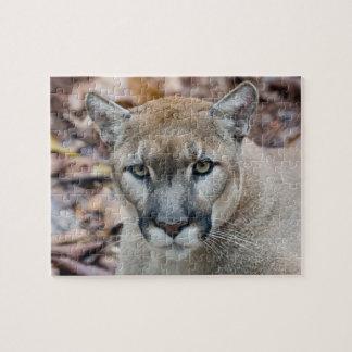 Cougar, mountain lion, Florida panther, Puma Jigsaw Puzzle