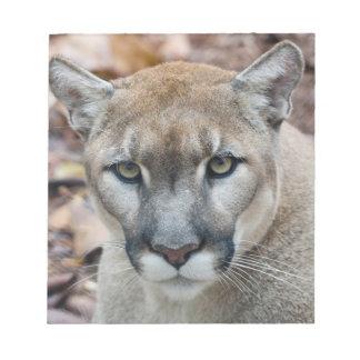 Cougar, mountain lion, Florida panther, Puma Notepad