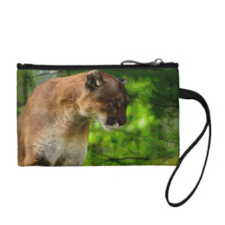 Cougar Mountain Lion & Pine Branches Wildlife Art Coin Wallets