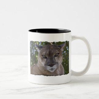 Cougar Pounce Coffee Cup Two-Tone Coffee Mug