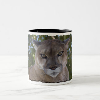 Cougar Pounce Coffee Mug