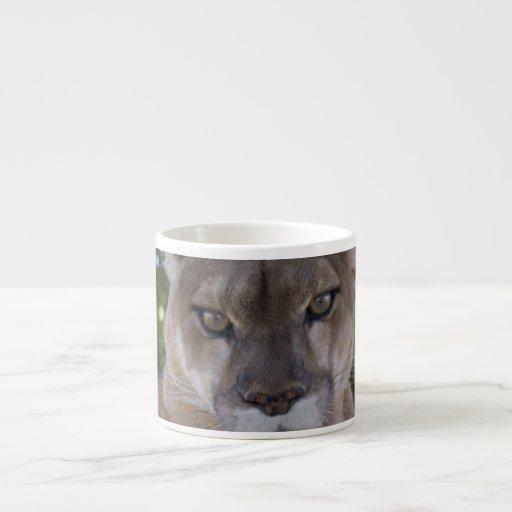 Cougar Pounce Specialty Mug Espresso Cups