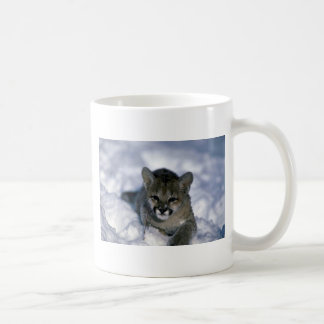 Cougar-small cub on snow coffee mug