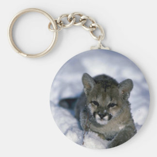 Cougar-small cub on snow keychains