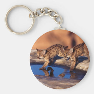 cougar twin cubs key chains