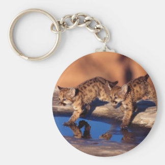 cougar twin cubs keychains