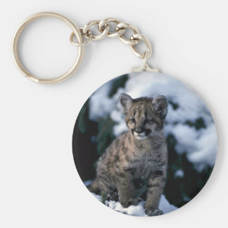 Cougar-young cub in snowy tree keychain