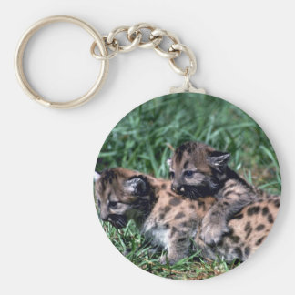 Cougars-cubs playing keychains