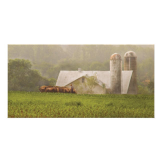 Country - Amish Farming Card