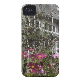 Country house iPhone 4 Case-Mate cases