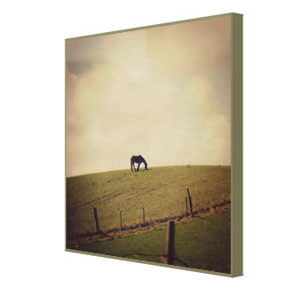 """""""Country Life"""" Series 2   Premium Wrapped Canvas"""