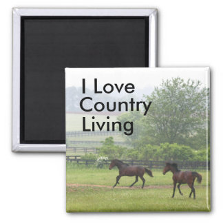 Country Living Horses playing Magnet