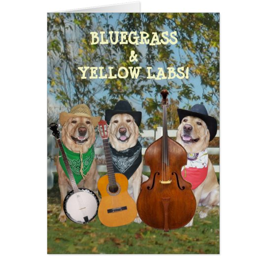 Country Music & Labs Customisable Birthday Card