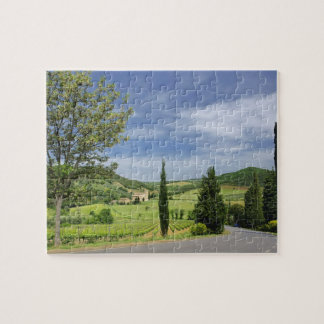 Country road curving between cypress trees in jigsaw puzzle