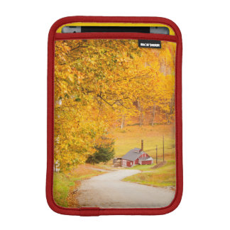 Country Road Leading To The Sugar Mill iPad Mini Sleeve