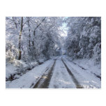 Country Road Snow Postcard