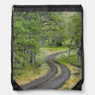 Country road through trees, Oregon Drawstring Bag