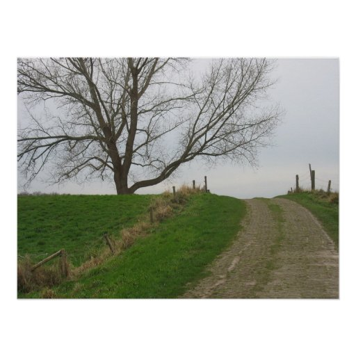 Country Road & Tree Photo Poster Art