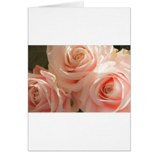 country rose card