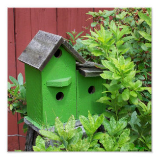 Country Village Vintage Antique Green Birdhouse by Print