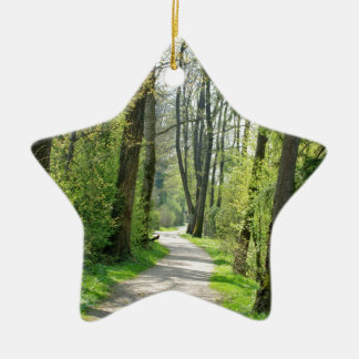 Countryside Ceramic Star Decoration