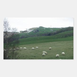Countryside in Scotland Rectangular Sticker