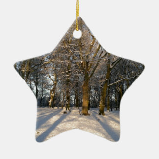 countryside in the snow with two figures ceramic star decoration