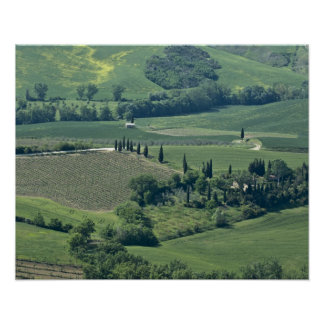 Countryside near Montepulciano, Val d'Orcia, Poster