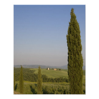 Countryside near Pienza. Val d'Orcia, Siena Poster