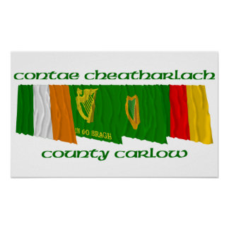 County Carlow Flags Print