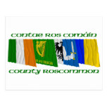 County Roscommon Flags