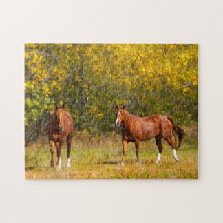 Couple Fall Horses Puzzles