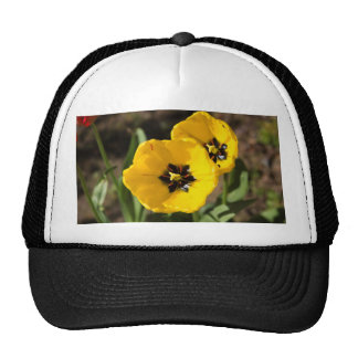 Couple of bright yellow tulip flowers trucker hat