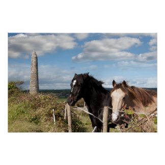couple of Irish horses and ancient round tower Print
