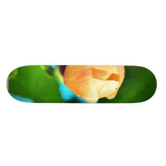 Couple Of Orange Flower Buds Skate Board Deck