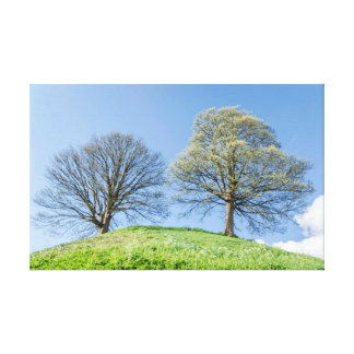 Couple of Trees Spring Summer Landscape Canvas Canvas Prints