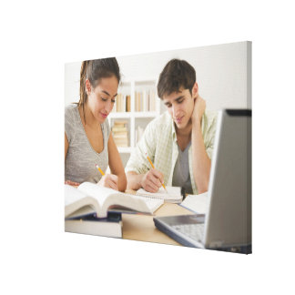 Couple studying together canvas print