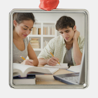 Couple studying together christmas ornament